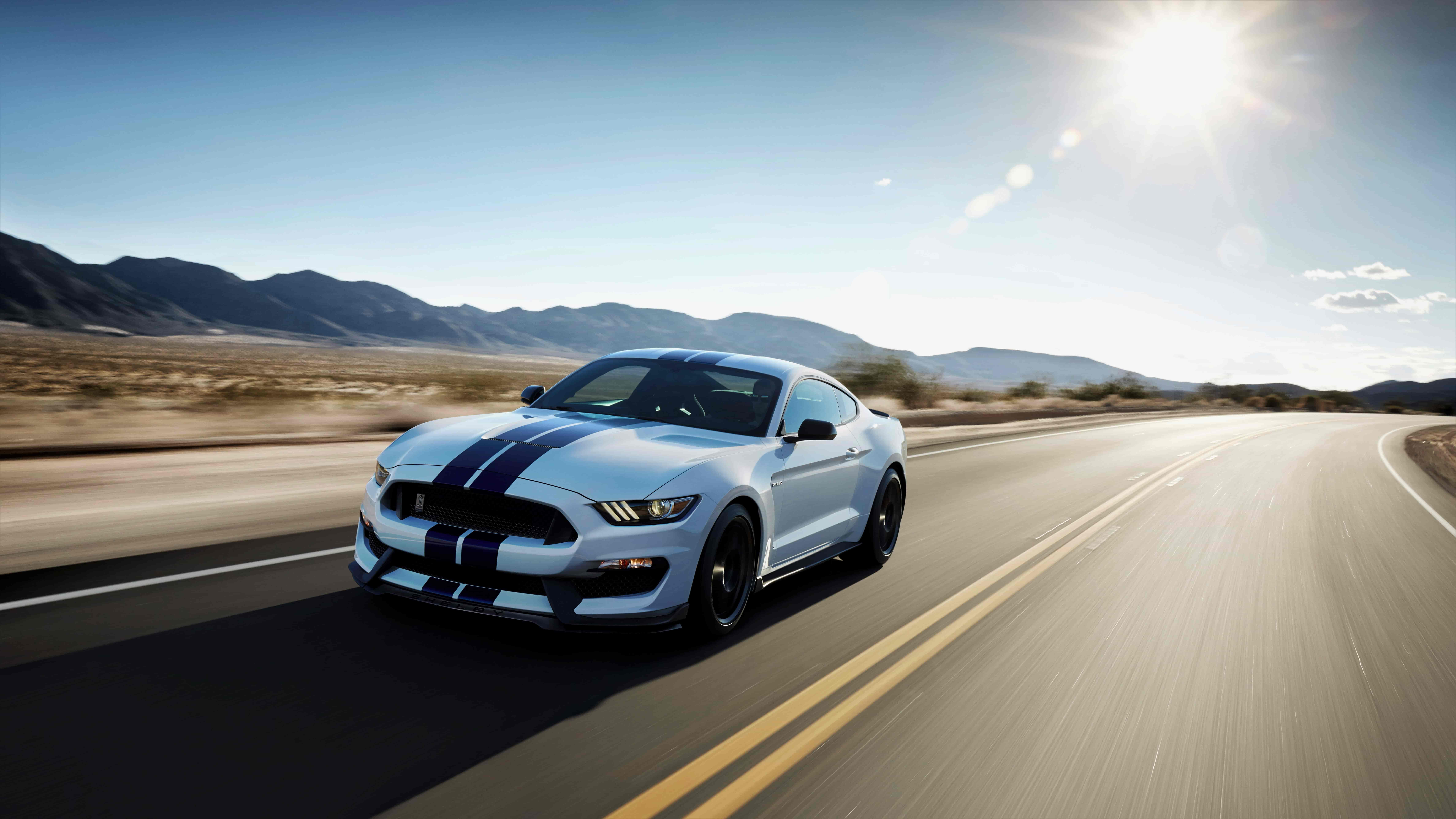 shelby white gt350